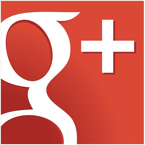SM Google Plus Icon